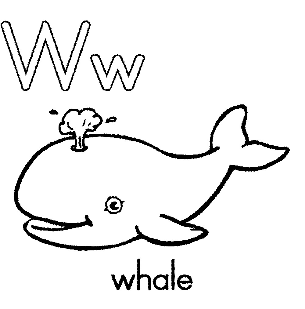 Whale outline template