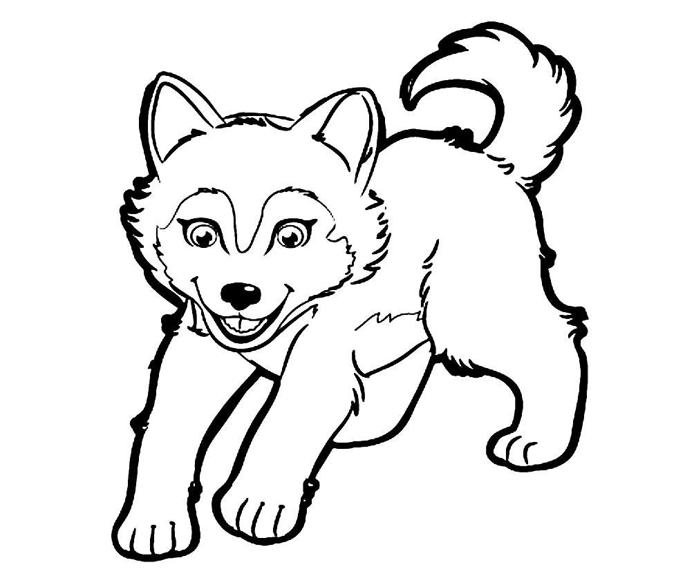 Волчонок раскраска