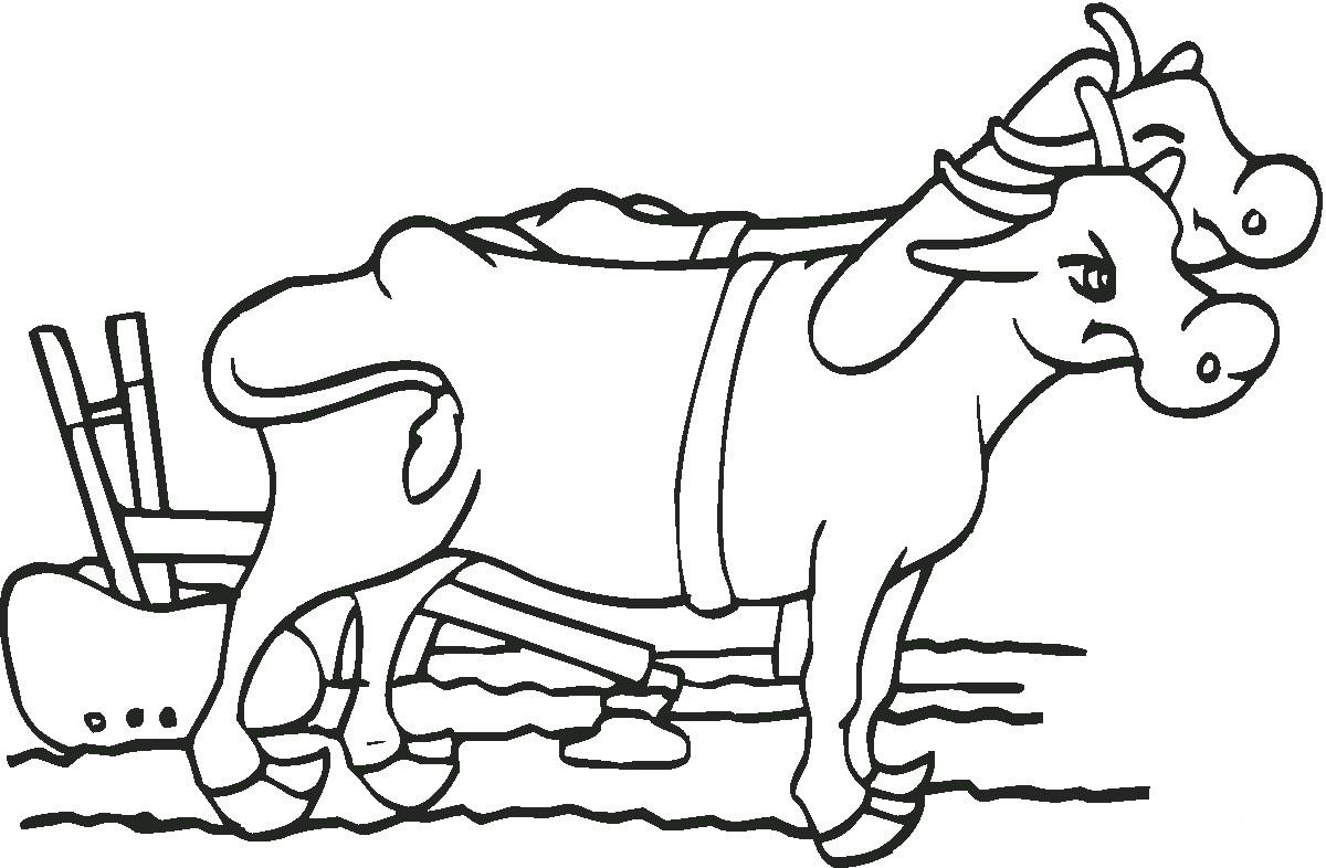 Раскраска волы с плугом