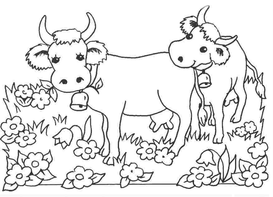Раскраска две коровы