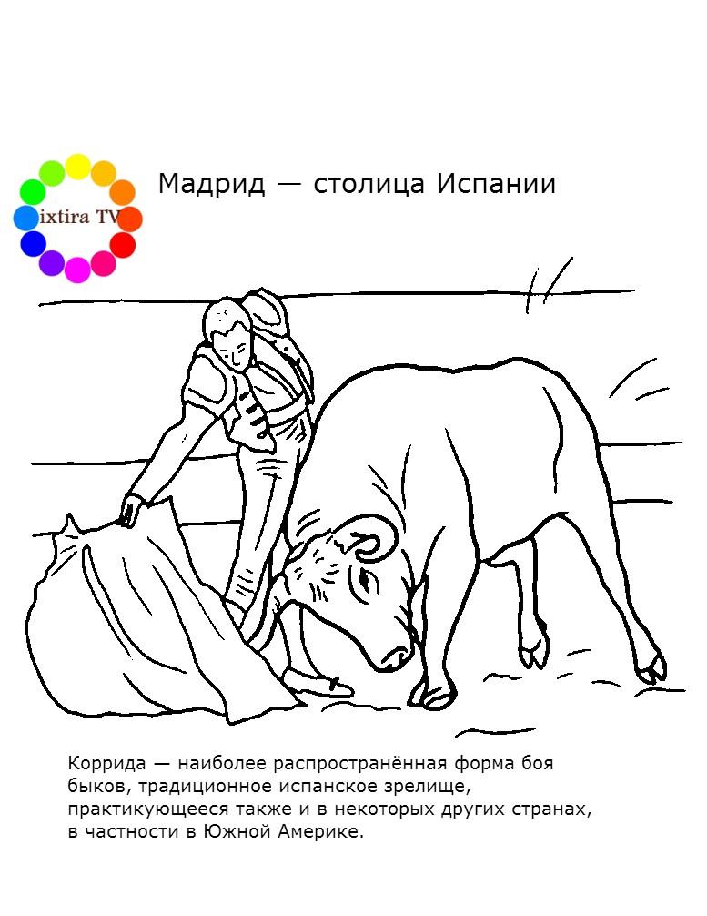 Раскраска Коррида