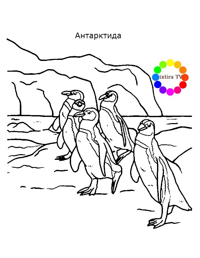 Раскраска Антарктида