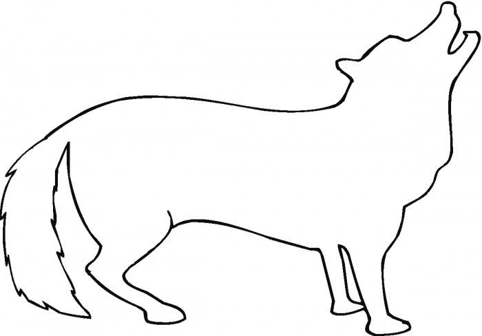 Раскраска контур койота