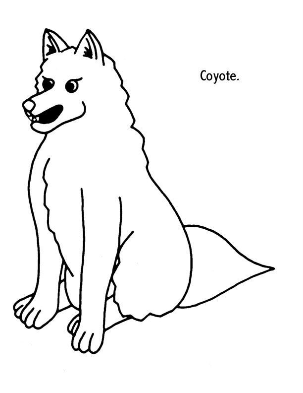 Раскраска злой койот