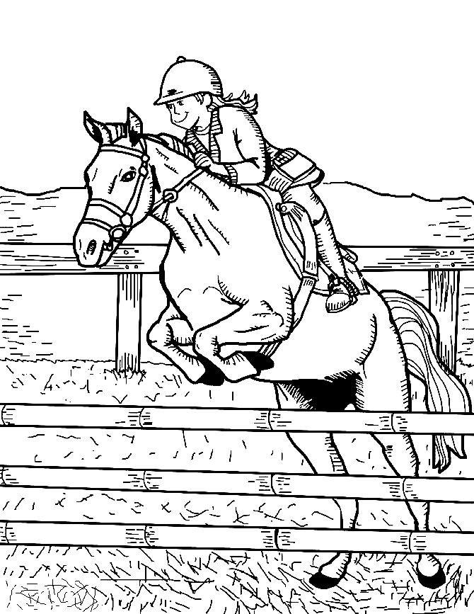 Раскраска конный спорт