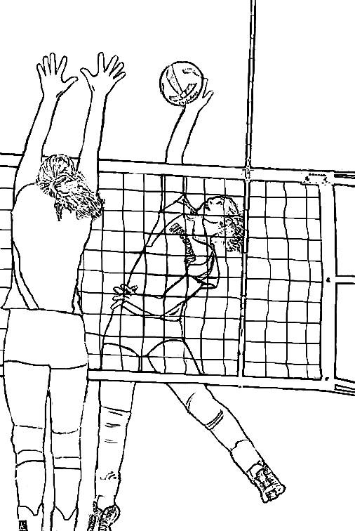 Картинка волейбол скачать 5