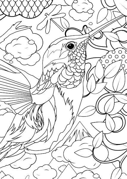 Раскраска арт терапия птицы — колибри