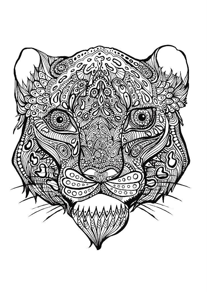 Раскраска арт терапия — голова львицы