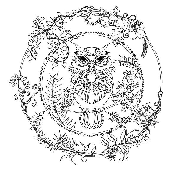 Раскраска лесная арт терапия сова