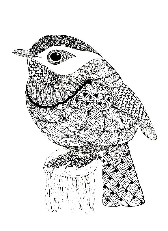 Раскраска антистресс птица