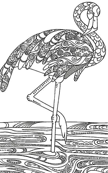 Раскраска арт терапия птицы — фламинго
