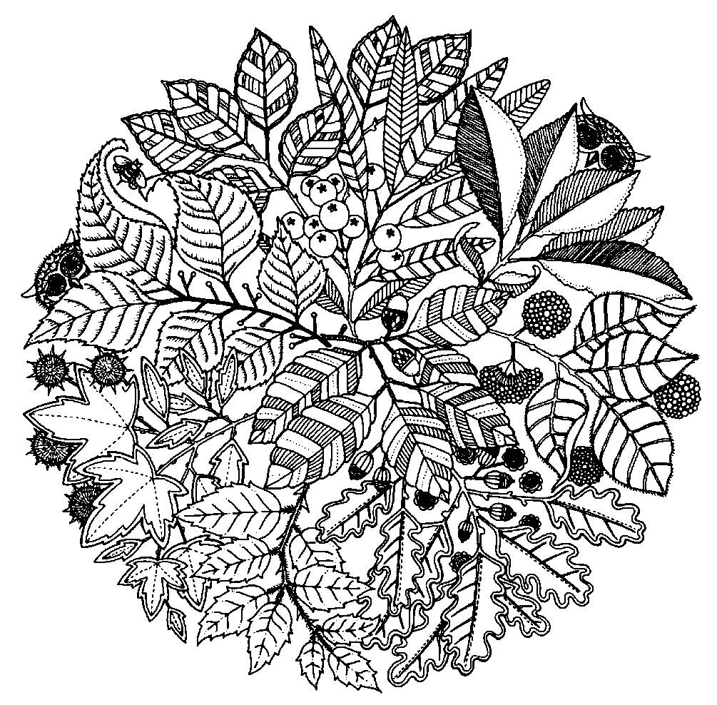 Раскраска мандала осень