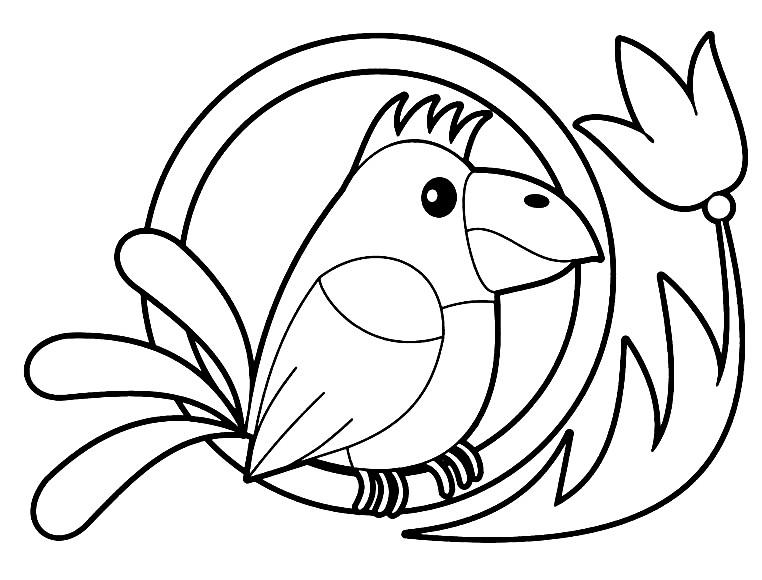 Раскраска попугай для самых маленьких