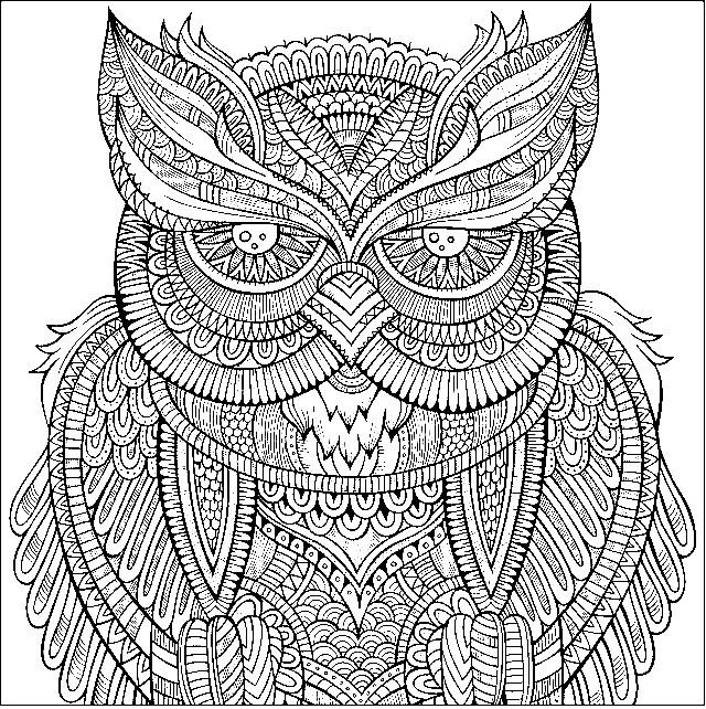 Раскраска сова арт картинка