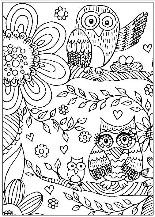 Раскраска семейство сов