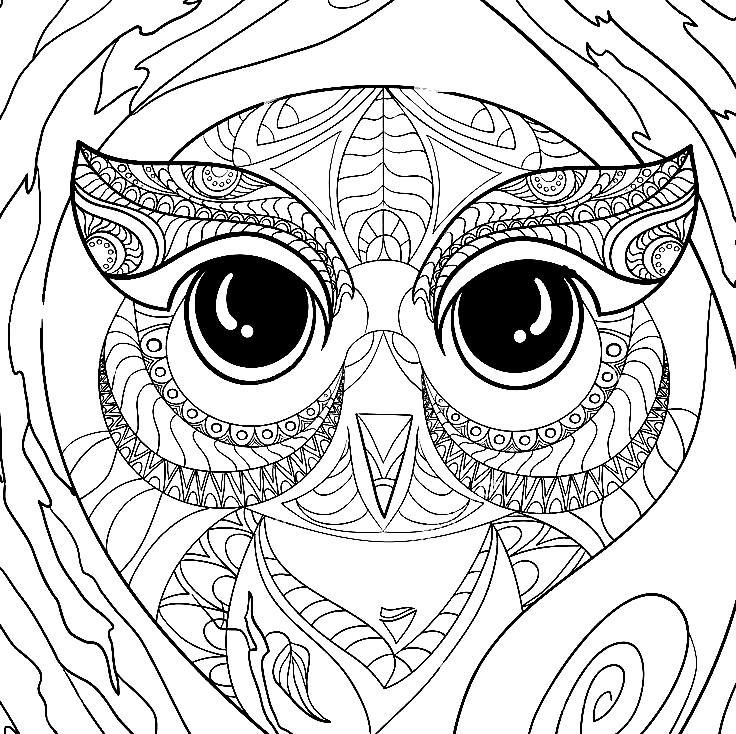Раскраска лицо совы | Раскраски для детей распечатать ...