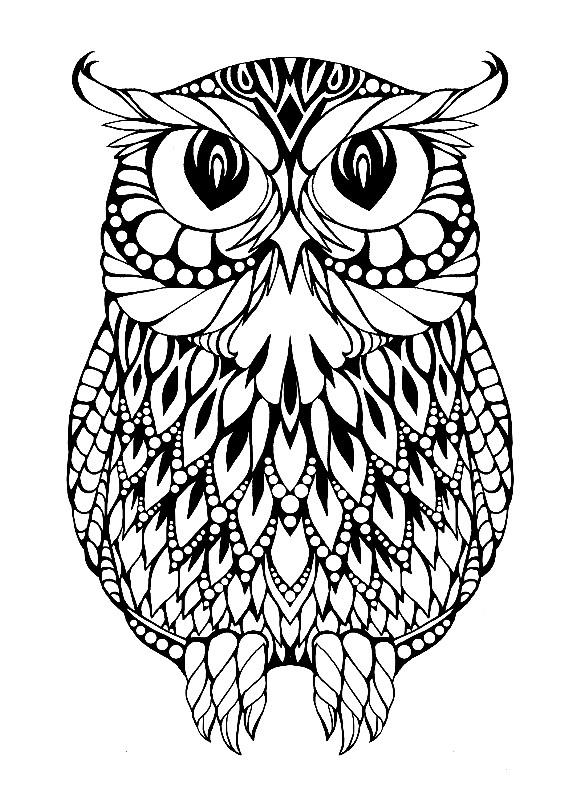 Раскраска сова с большими глазами