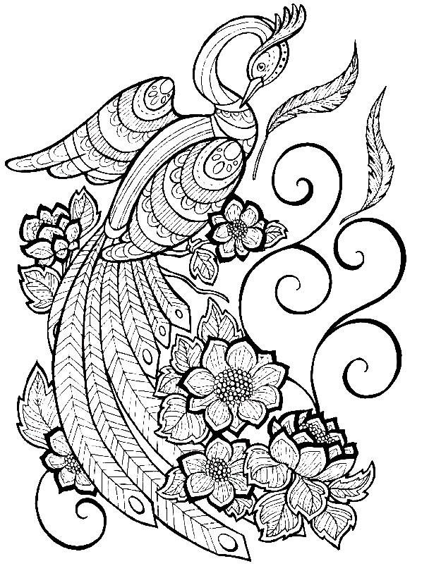 Раскраска волшебная птица