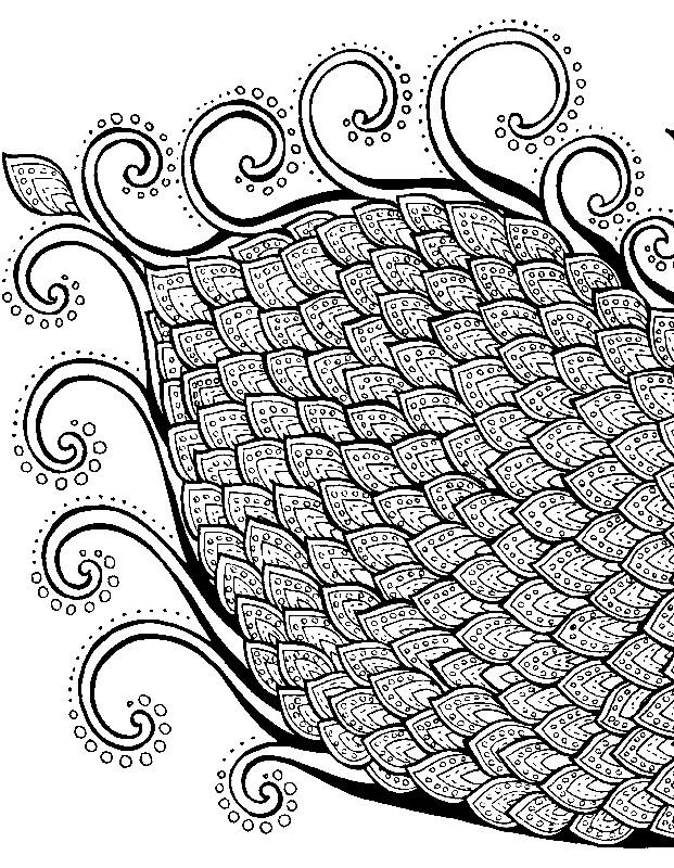 Раскраска павлин 2 часть