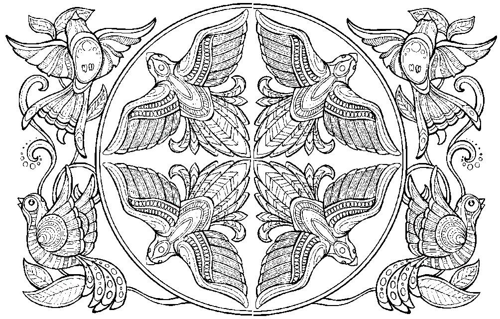 Раскраска орнамент с птицами — гармония