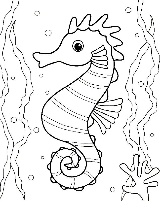 Раскраска морской конек в аквариуме
