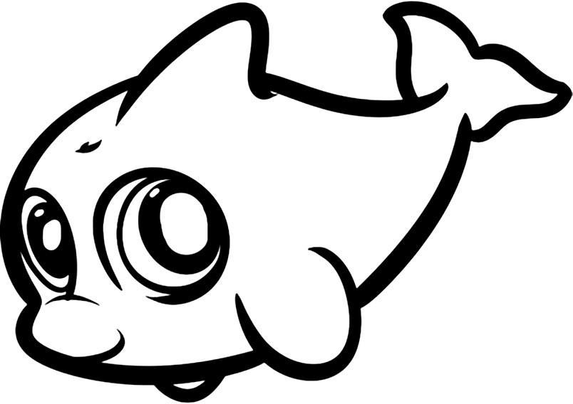 Раскраска дельфинчик
