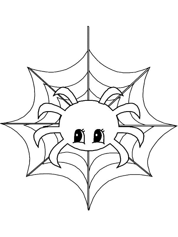 Раскраска милый паук с паутиной