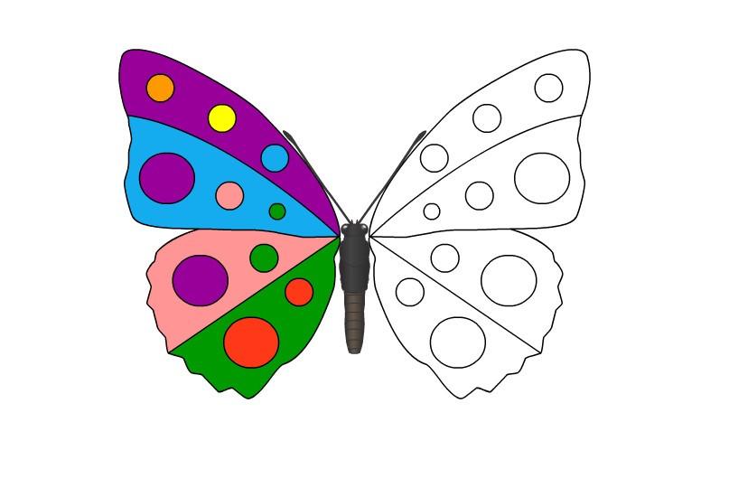 Раскраска бабочка с круглым узором