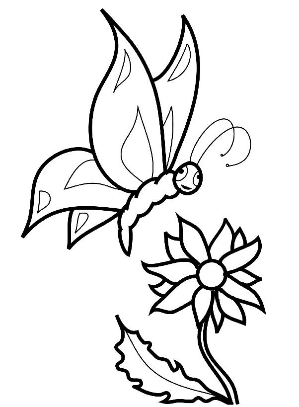 Раскраска цветок и бабочка