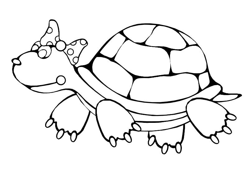 Раскраска черепаха для девочек | Раскраски для детей ...