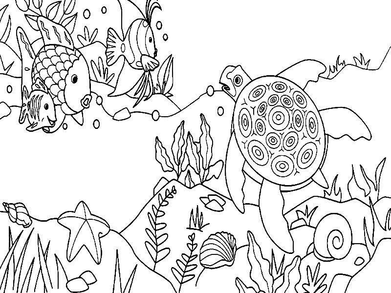 Раскраска черепаха и рыбы