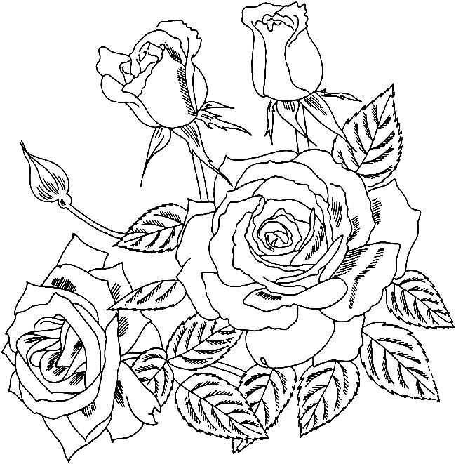 Раскраска красивые цветы