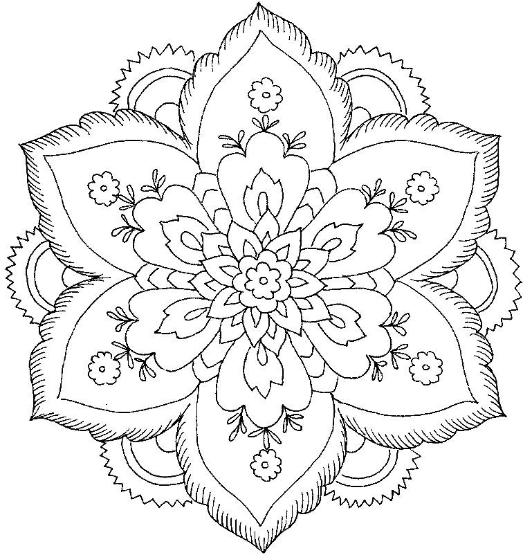Раскраска красивый цветок