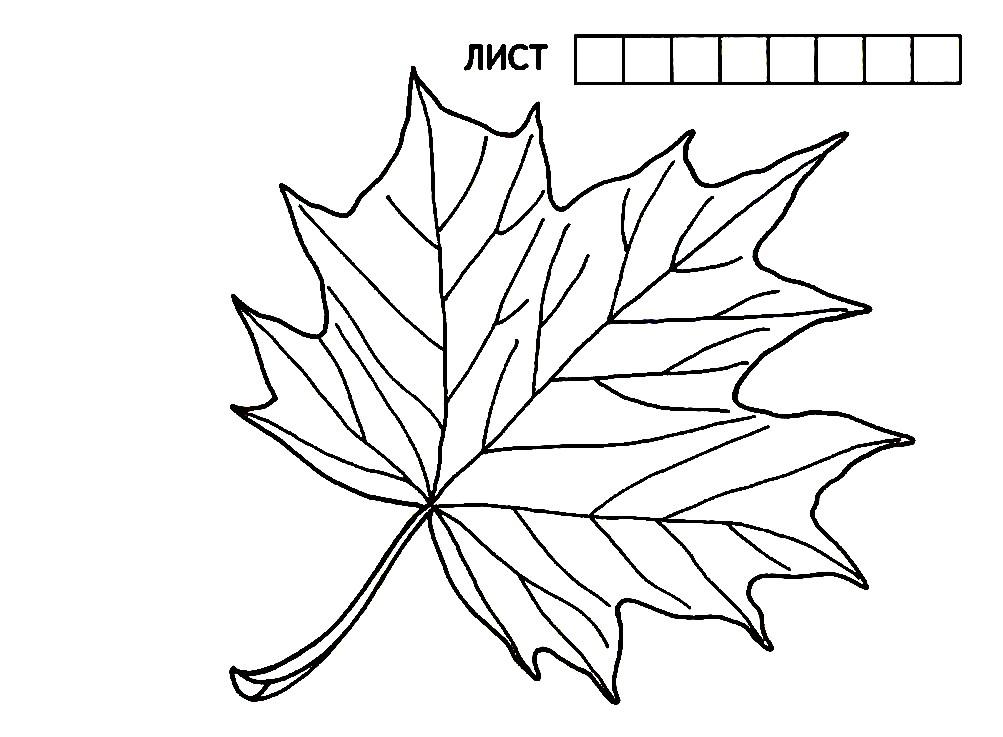 Раскраска угадай название листа