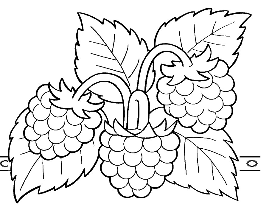 Раскраска малина