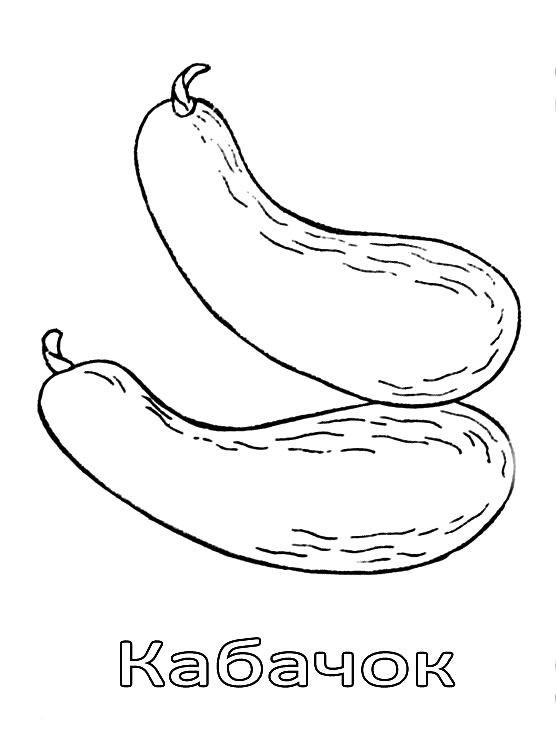 Раскраска кабачок