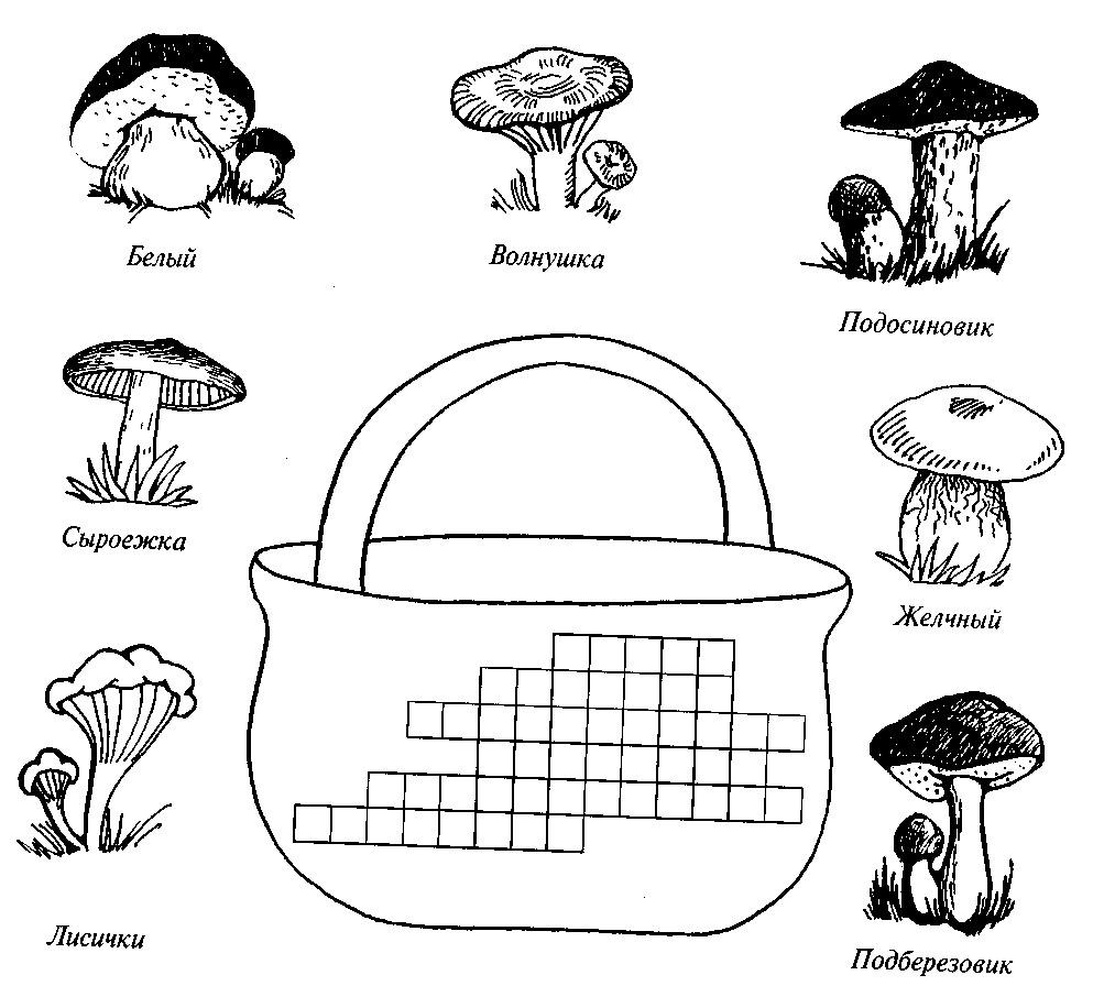 Раскраска грибное царство