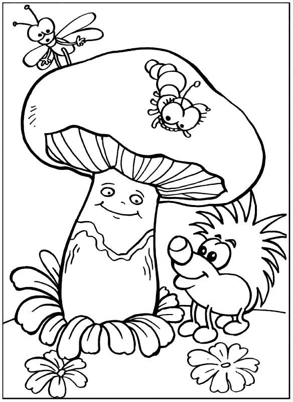 ГРИБЫ | Раскраски для детей распечатать бесплатно в формате А4