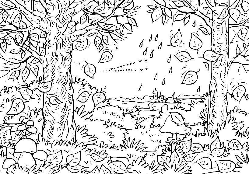 Раскраска осенний лес