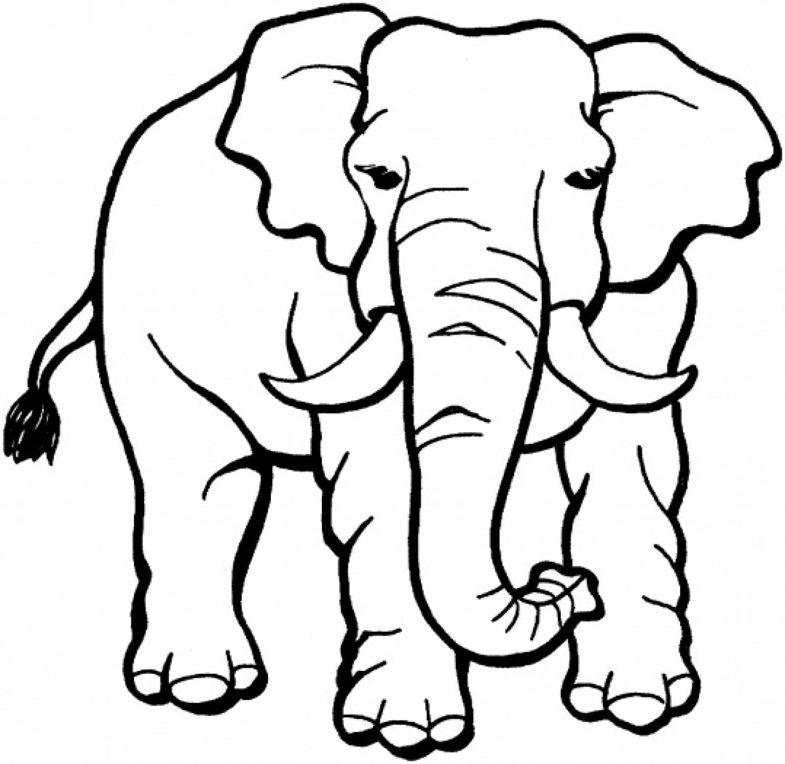 Раскраска Африканский слон