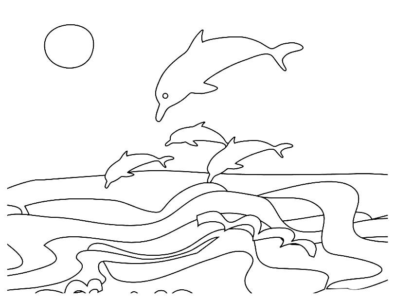 Раскраска дельфины в море