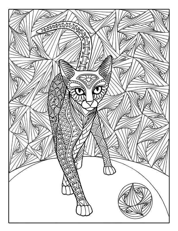Раскраска загадочная кошка