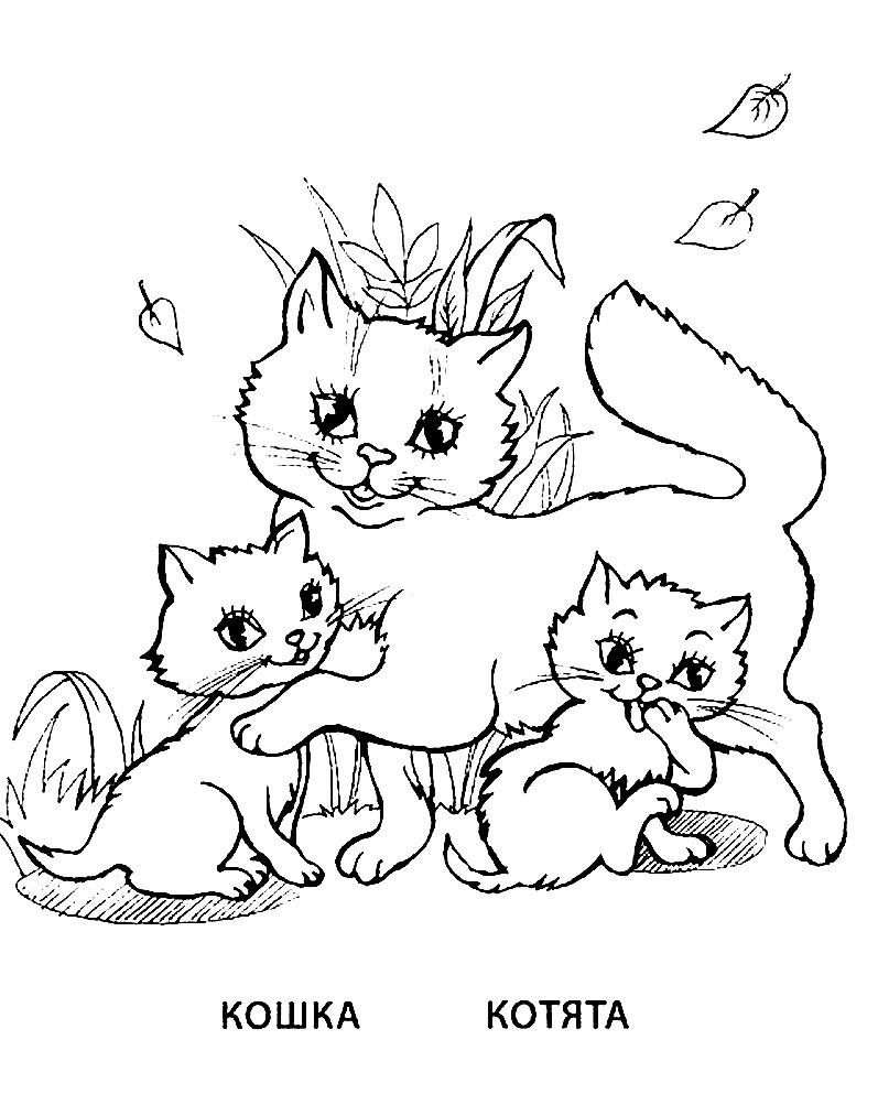 Раскраска кошка и котяти