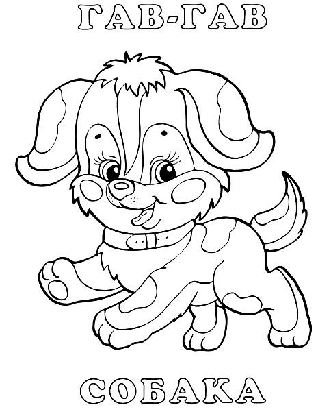 Раскраска собачка