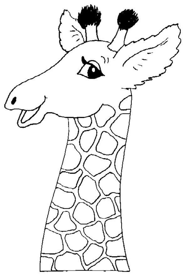 Раскраска голова жирафа