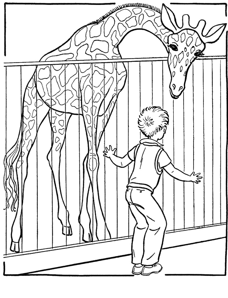 Раскраска жираф в зоопарке