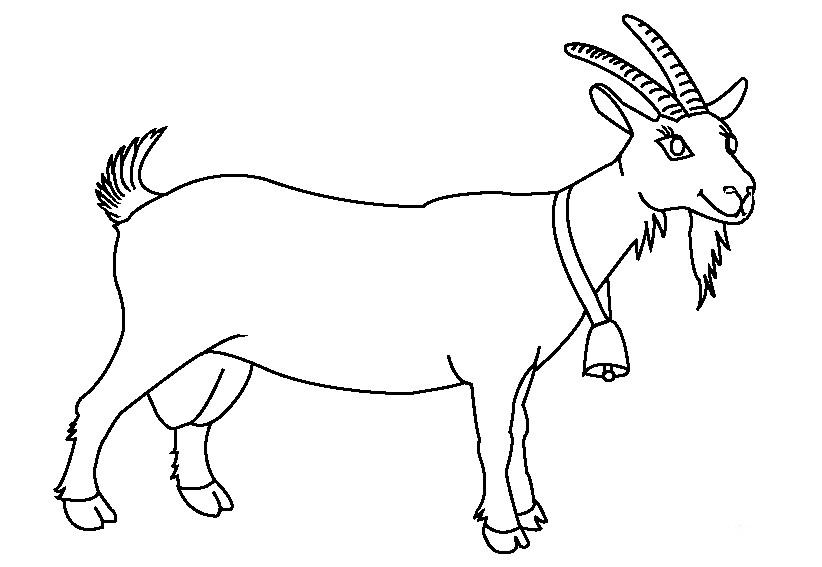 Раскраска козел с колокольчиком на шее