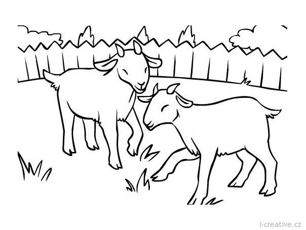 Раскраска два козленка