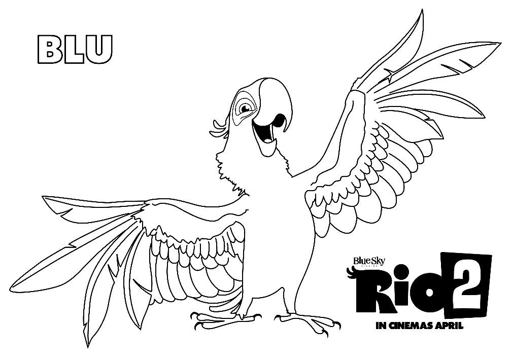 Раскраска попугай из Рио 2