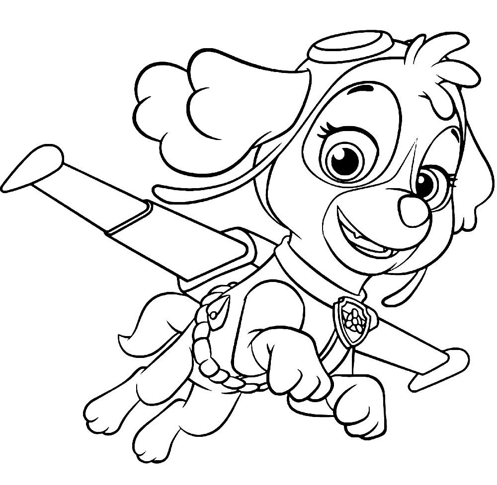 Раскраска щенок девочка Скай